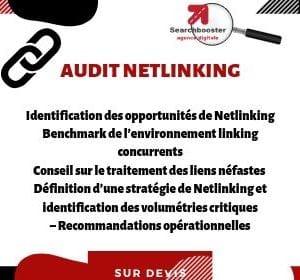 Audit net-linking