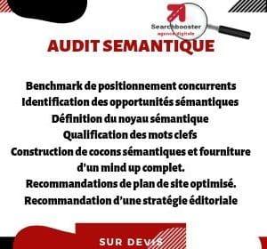 Audit sémantique