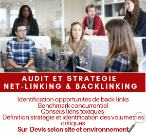 Audit net-linking