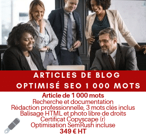Article optimisé SEO 1 000 mots