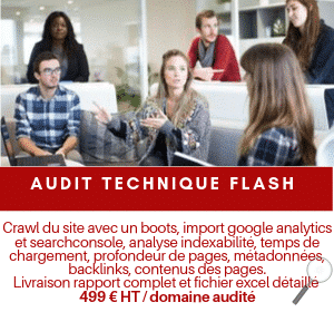 Audit technique flash